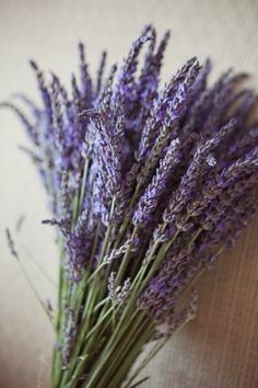 Lavender: use to freshen up bathrooms, kitchens, etc