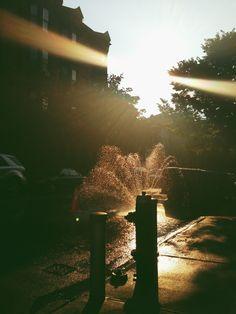 Brooklyn summer via bigBANG studio