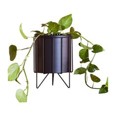 Shop Contemporary Pots & Planters Online or Visit Our Showrooms To Get Inspired With The Latest Pots & Planters From SLH - Contemporary Metal Planter Metal Planters, Planter Pots, Little Designs, Frame Display, Outdoor Life, Pretty Cool, Contemporary, Modern, Cleaning Wipes