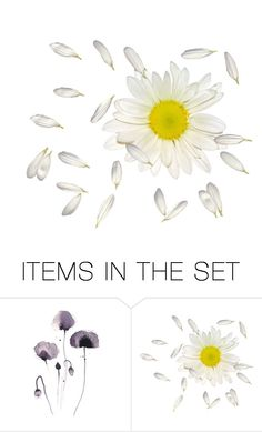 """Untitled #1176"" by chenonsisonoio ❤ liked on Polyvore featuring art"