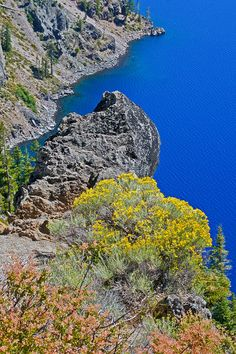 ✮ Crater Lake National Park - Crater Lake, OR - Fabulous Pic! Places To Travel, Places To See, Wonderful Places, Beautiful Places, Crater Lake Oregon, American National Parks, Crater Lake National Park, Viera, Vacation Destinations