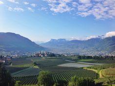Reisen: Buongiorno aus Meran, Südtirol! - Journelles