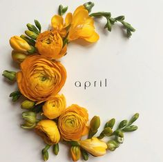 hello april (angelina molla) - april flower lay with ranunculus and freesia. Seasons Months, Months In A Year, 12 Months, Flower Backgrounds, Wallpaper Backgrounds, Yellow Flowers, Spring Flowers, Month Flowers, Glass Wind Chimes