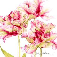 Jan Harbon--not an English language web link, just loved Jan's flora painting.