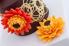 Gerber daisies made from chocolate...so cool!!  Modeling Chocolate Gerbera Daisy Tutorial Tutorial on Cake Central