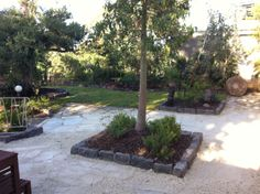 MCM front garden renovation | New lawn, bluestone edging, feature native planters and random slate paving