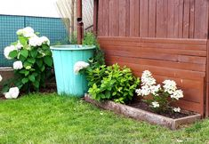 Outdoor Structures, Plants, Flora, Plant, Planting