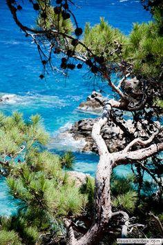 Karpathos Greece Er så lykkelig over vores kommende ferie til denne fantastiske ø, glæder mig uendeligt til at være der igen med Jonas og pigerne:) HAPPINESS IS HERE TO STAY.