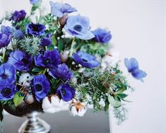 Lush cobalt blue centerpiece of anemones, cotton, pine, and privet berries. Wildflower Bridal Bouquets, Hydrangea Bouquet Wedding, Bridal Bouquet Blue, Cascade Bouquet, Blue Wedding Flowers, Blue Bridal, Bride Bouquets, Bridal Flowers, Blue Centerpieces