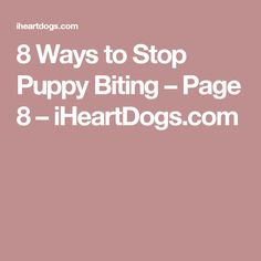 8 Ways to Stop Puppy Biting – Page 8 – iHeartDogs.com