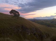 Te Mata Peak sunset Heartland, New Zealand, Mountains, Sunset, Places, Nature, Photography, Travel, Naturaleza