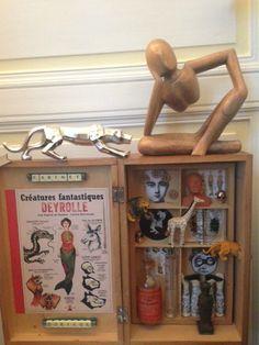 Box cabinet de curiosités