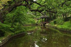 Changdeokgung's Secret Garden (1405/1592 CE) Seoul