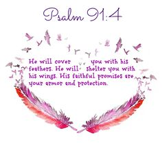 Psalm 91:4 He will cover you with his feathers.     He will shelter you with his wings.     His faithful promises are your armor and protection.