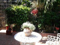 Jardin soleado!