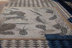 Volubilis Mosaic, Volubilis, Morocco.