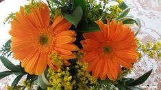 Gérberas são flores que podem ter tantos significados como cores que apresentam. Simbolizam a pureza, inocência das crianças, a beleza da vida e a energia positiva da natureza. Elas também podem significar amor, nobreza, sensibilidade, alegria e simplicidade. Podem ter cerca de vinte tonalidades diferentes, entre elas o branco, amarelo, vermelho, laranja, rosa e roxo. Fotografia:Simone Seffrin