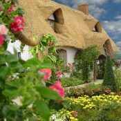 I've always loved the look of an English cottage. There is an irrefutable charm about them that just makes me smile and want to step inside for a peek. Take this cozy cottage for instance. Is this adorable or…Read more → Irish Cottage, Cute Cottage, Cottage Style, Tudor Cottage, Cottage Farmhouse, Fairytale Cottage, Romantic Cottage, Garden Cottage, Cottage Homes