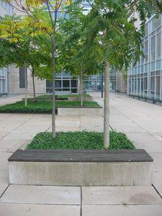 Til Københavns Universitet har vi leveret de sandfarvede fliser og flere siddeplinte med træsæde. Aarhus, Sidewalk, Plants, Side Walkway, Walkway, Plant, Walkways, Planets, Pavement