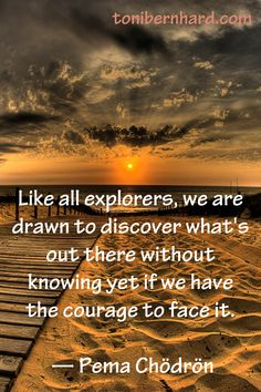 Like all explorers, we are drawn to discover what's out there without knowing yet if we have the Courage to face it -Pema Chodron