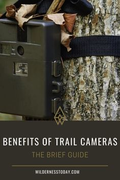 There are many great uses for trail cameras in wildlife management. Find out more!