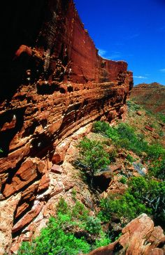 Fantastic deals at Kings Canyon Resort, Kings Canyon.Travelmate offers discount rates up to 365 days in advance Places To Travel, Places To Go, Holiday Destinations, Hotels And Resorts, Wonderful Places, Around The Worlds, Gallery, Alice Springs, Beautiful Scenery