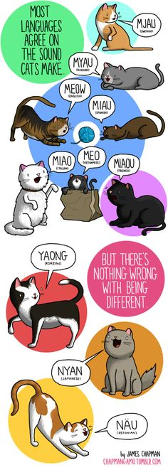 Cat sounds in different languages. by James Chapman. chapmangamo.tumblr.com  http://www.buzzfeed.com/robinedds/what-noises-do-animals-make-in-other-languages-here-is-an-im