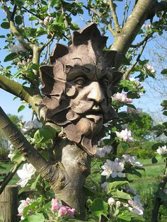 The Forest Green Man. looking after the Apple Orchard Mother Earth, Mother Nature, Nature Verte, Tree Carving, Carving Wood, Wood Carvings, Tree Faces, Magical Tree, Nature Spirits