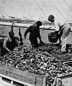 Awesome vintage photo of Chesapeake watermen posted by the Oyster Recovery Project.
