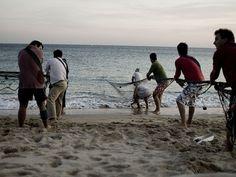 Faina de Pesca, Sesimbra - Pescadores de Sesimbra puxando a rede.