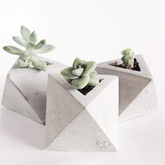This adorable mini concrete geometric planter is perfect for airplants or tiny succulent cuttings. Each piece is handmade, so expect slight variations, which ma Beton Design, Concrete Design, Succulent Cuttings, Succulents, Succulent Planters, Concrete Planters, Planter Pots, Magazine Deco, Boutique Deco