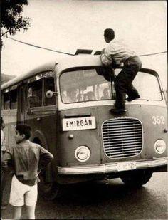 Emirgan Otobüsü'nün başına gelen şirin bir kaza