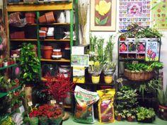 Mikel Zuazua: plantas, semillas y flores en el Casco Viejo de Bilbao | DolceCity.com