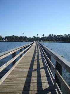Dunedin, Florida Dunedin Florida, Palm, Spaces, Beach, Water, Travel, Outdoor, Gripe Water, Outdoors