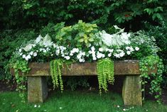 white caladiums, lime irisine and New Guinea impatiens in an antique English trough
