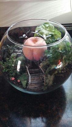 James and the giant peach terrarium