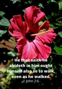 1 John 2:6 KJV