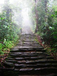 Eine der schönsten #Trekkingreisen Südamerikas: Die mehrtägige #Dschungelwanderung zur Ciudad Perdida in Kolumbien