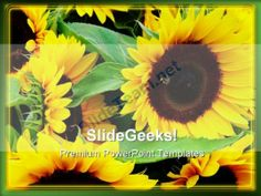 Sunflower Beauty Abstract PowerPoint Templates And PowerPoint Backgrounds 0211 #PowerPoint #Templates #Themes #Background