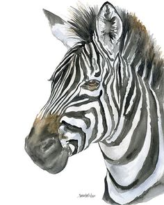 Zebra is a giclée print reproduction of my original watercolor painting. Portrait/Vertical orientation  Printed on velvet fine art paper using