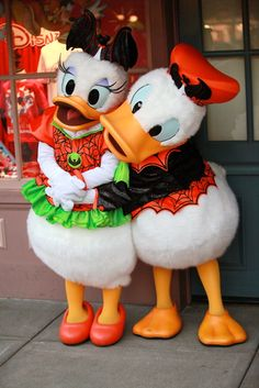 Donald and Daisy. :)