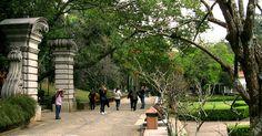 Jardim Botanico de  Sao Paulo - Pesquisa Google
