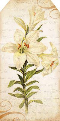Printable :: Easter Lilies tags