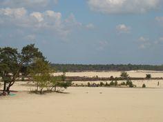 Drunense duinen.