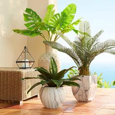 Laying Artificial Gr Small Plants Plant Wall Flowers Porch