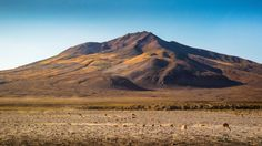 Morning in the Altiplano Potosi Region Bolivia [2048x1152][OC]