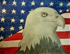 Graphite Pencil Drawing with Shading *Colored Pencil Background Optional* Available in Different Sizes The picture above is of an original drawing (Buyers will receive a PRINT of this picture) Flag Drawing, Eagle Drawing, Pencil Art, Pencil Drawings, Bald Eagle, Colored Pencils, Wildlife, Pictures, Handmade