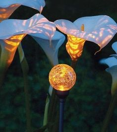 Therefore, using the Firefly Solar Garden Art, lights powered by solar energy, to decorate our garden would be a wonderful idea. The advantages of solar garden lights are that they can be freely. Moon Garden, Garden Art, Garden Design, Garden Ideas, Dream Garden, Patio Ideas, Solar Powered Lights, Solar Lights, Lighting Your Garden