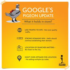 How does Google's Pigeon update affect crucial factors such as website traffic and ranking performance? Google is still altering the algorithm but its a given that this Pigeon is here to sing!  P.S. - These details are drawn from a study done on a sample size of 5,000 location pages across several industries.