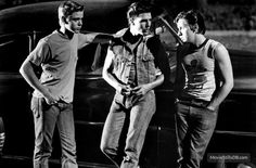 Tom Cruise and C. Thomas Howell and Emilio Estevez in The Outsiders Poster Tom Cruise Quotes, Die Outsider, The Outsiders Cast, Emilio Estevez, Ralph Macchio, Culture Clothing, Rare Pictures, Random Pictures, Rare Photos